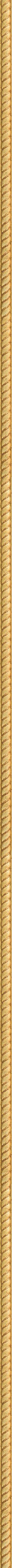 Carved thin gold leaf frame frame
