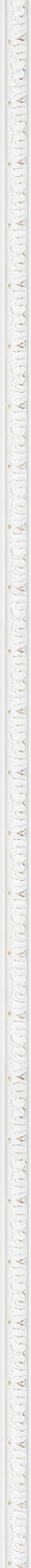 Carved white decape frame frame